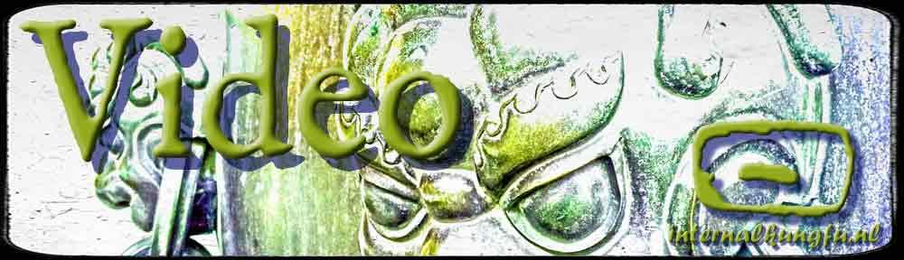 HDleeuwen+logo